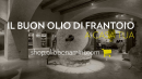 Frantoio Bonamini launches the new e-commerce